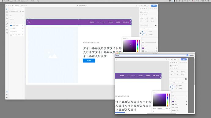 ScreenShot_ColorMimicLite
